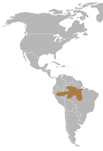 Amazonian Manatee Range Map (Amazon Basin, S America)