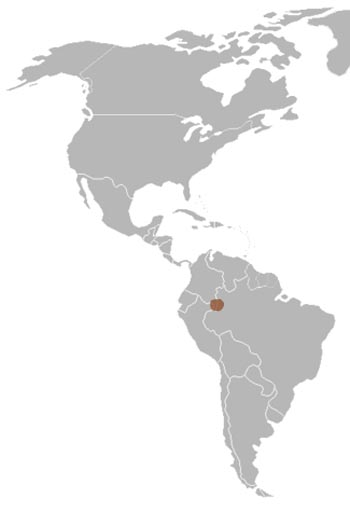 Bald Uakari Range Map (South America)