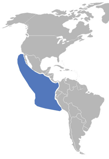 Blue-Footed Booby Range Map (Western Americas)