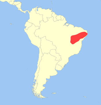 Brazilian Three-Banded Armadillo Range Map (Brazil, South America)