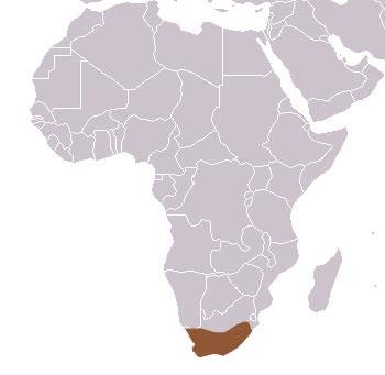 africa map grey
