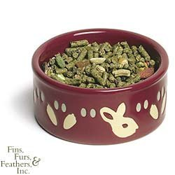 Ceramic Feeder For Rabbits