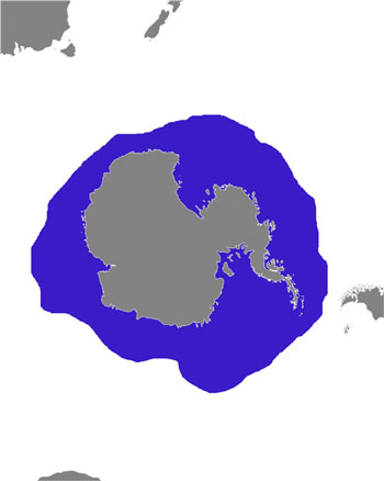 Crabeater Seal Range Map (Antarctic & Subantarctic waters)
