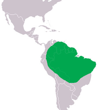 Cuvier's Dwarf Caiman Range Map (South America)