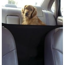 Outward Hound Front Seat Safety Barrier