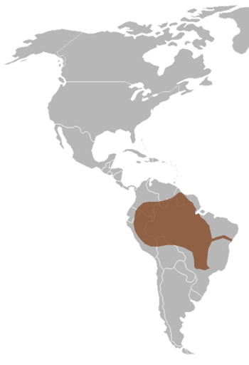 Giant Otter Range Map (South America)