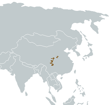 Giant Panda Range Map (China)