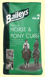 Working Horse & Pony Cubes