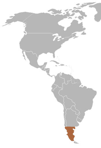 Humboldt's Hog-Nosed Skunk Range Map (South America)