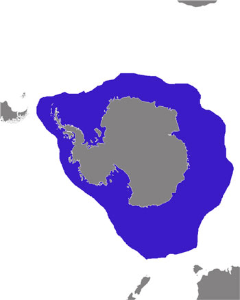 Leopard Seal Range Map (Antarctic)
