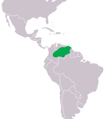 orinoco river on map. Orinoco Crocodile Range Map (S