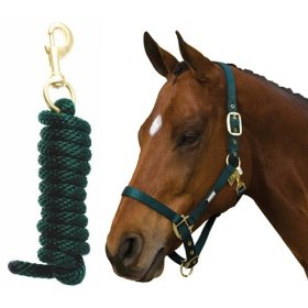 Roma Continental Nylon Halter with Lead