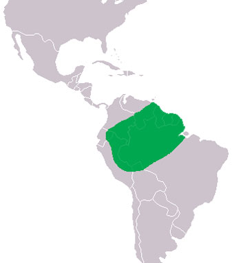 Smooth-Fronted Caiman Range Map (South America)
