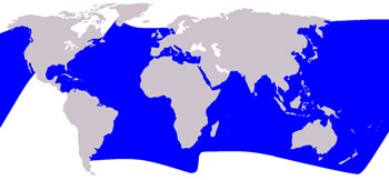 Striped Dolphin Range Map (Temperate & Tropical Waters Worldwide)