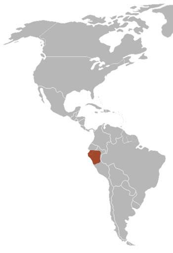 Sechuran Fox: The Animal Files on thar desert, sonoran desert, sturt's stony desert, atlantic forest map, arabian desert, baja california desert, namib desert, ordos desert, nullarbor plain map, patagonian desert, mojave desert, sahara map, deserts and xeric shrublands, machu picchu map, indus valley desert, simpson desert, patagonia map, gobi desert, americas map, sacred valley map, chihuahuan desert, cusco map, dasht-e lut map, gran desierto de altar, landmarks of ecuador on map, atacama map, gran chaco map, monte desert,